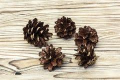 Op de houten oppervlakte zijn vijf denneappels Royalty-vrije Stock Afbeeldingen