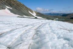 Op de IGAN-gletsjer op een warme de zomerdag Polaire Ural, Rusland stock afbeelding