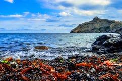 Op de kust van de Zwarte Zee stock afbeelding