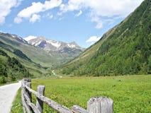 Op de manier aan de berghut \ Knuttenalm \ Royalty-vrije Stock Fotografie