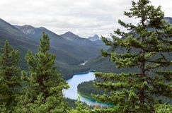 Op de manier aan Frosty Mountain, de EG Manning Park, Brits Colombia, Canada stock foto's