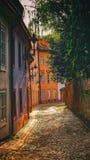 Op de Nieuwe Wereld in Praag Royalty-vrije Stock Foto