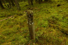 Op de overwoekerde bosweg bleef mijlpaal met pre-revolutionaire tijden Stock Foto