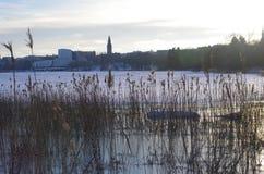 Op de parkenrand in Helsinki Royalty-vrije Stock Foto's