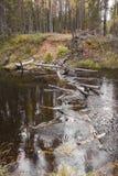 Op de Rivier van September Mekhrenga in het Arkhangelsk-gebied van Rusland Royalty-vrije Stock Fotografie
