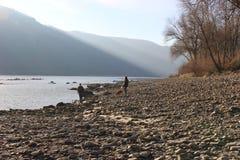 Op de rivieroever van de rivier van Donau in de winter In het gebied Wachau, Muhldorf, Oostenrijk, Europa Stock Foto's