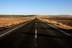Op de weg buiten Sevilla royalty-vrije stock foto's