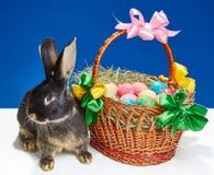 Op een blauw konijntje als achtergrond dichtbij een mand met paaseieren Royalty-vrije Stock Fotografie