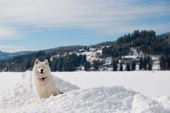 Op een de wintermeer Stock Afbeelding