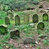 Op een Heuvel in de Tsjechische Republiek een oude Joodse Begraafplaats Stock Afbeeldingen