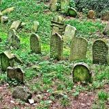 Op een Heuvel in de Tsjechische Republiek een oude Joodse Begraafplaats Royalty-vrije Stock Afbeeldingen