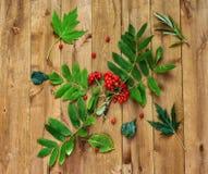Op een houten oppervlakte ligt een lijsterbessentak en groene bladeren Royalty-vrije Stock Fotografie