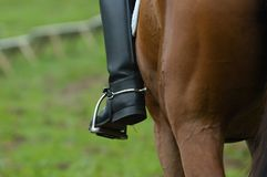 Op een Paard royalty-vrije stock afbeeldingen