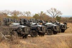 Op een rij geparkeerde safari4x4 voertuigen stock afbeelding