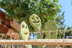 Op een zonnige dag het glimlachen smiley van cactus stock fotografie