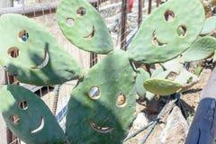 Op een zonnige dag het glimlachen smiley van cactus royalty-vrije stock foto