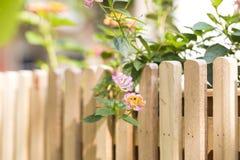 Op heldere zonneschijn en oranje en rode bloemen op de rand van een houten omheining met bruine kleur Stock Foto
