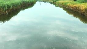 Op het het schuim en vuil van riviervlotters stock video