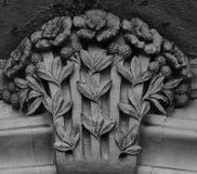 Op het kapitaal keurig groeien de bloemen stock afbeeldingen
