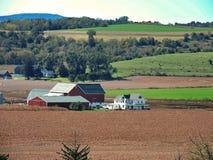 Op het landbouwbedrijf stock fotografie