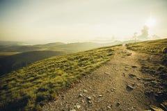 Op het plateau van Bucegi mouintains Stock Foto's