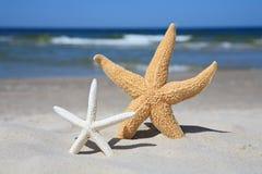 Op het strand Royalty-vrije Stock Foto's