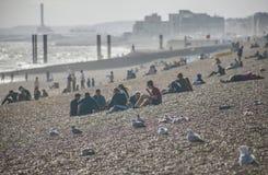 Op het strand in de zonneschijn, Brighton, Engeland Stock Afbeeldingen