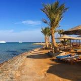 Op het strand in Egypte stock afbeelding
