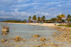 Op het strand Playa Giron, Cuba Stock Foto's