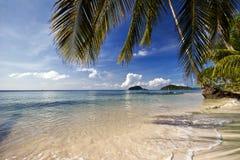 Op het tropische strand Stock Foto's