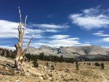 Op John Muir Trail stock afbeeldingen
