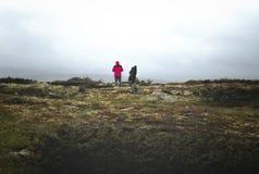 Op op de berg Stock Foto's