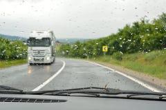 Op roan in een regenachtige dag Stock Afbeeldingen