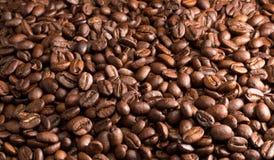 Op smaak gebrachte koffiebonen Stock Afbeeldingen