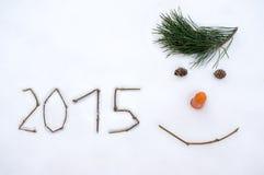 2015 op sneeuw Stock Afbeeldingen