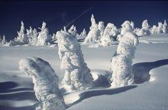 Op sneeuwsneeuw strom Stock Foto's