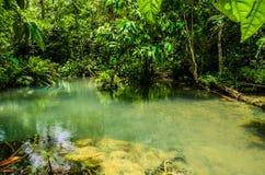 op stroom van de waterval van kuangsi Stock Foto