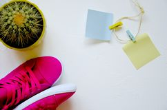 Op witte concrete roze tennisschoenen en cactus stock foto's