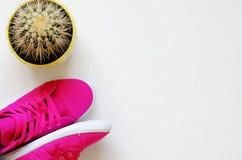 Op witte concrete roze tennisschoenen en cactus stock afbeelding