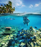 Op zoek naar onderwateravontuur 2 Royalty-vrije Stock Fotografie