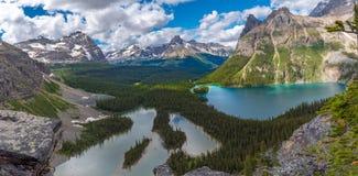 Opabin härlig fotvandra slinga för sjö i molnig dag i våren, Yoho, Kanada royaltyfri bild