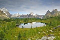 Opabin Lake Royalty Free Stock Photography