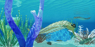 Opabinia eats Trilobite. The predator Opabinia uses its proboscis to eat a trilobite in a Cambrian ocean Stock Images