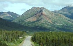 opacifie des arbres de montagnes Photos stock