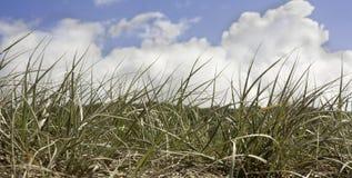 Opacifiez dans un ciel bleu au-dessus des dunes de sable à la plage Photo libre de droits