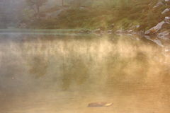 Opacità sul lago Fotografia Stock