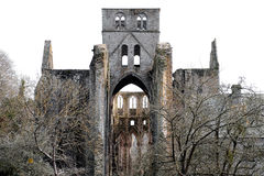opactwa France lucerna stara ruina Obrazy Royalty Free