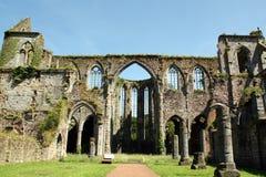 Opactwo ruiny Obraz Royalty Free