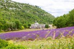 opactwo target4039_1_ Europe kwitnie France gordes lawendowego luberon Provence rzędów senanque Vaucluse Fotografia Royalty Free