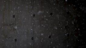 Opad śniegu na czarnym tle zdjęcie wideo